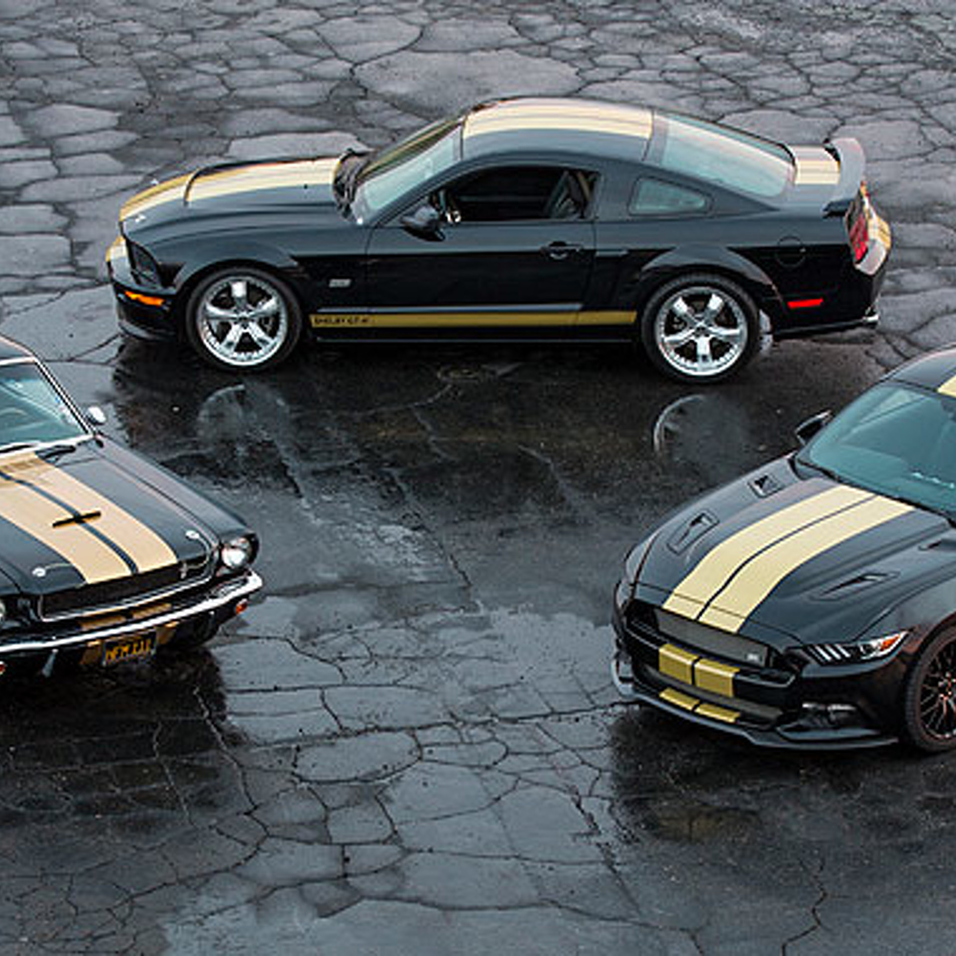 The Mustang Shelby GT-H 'Rent-A-Racer' Lives Again for 2016