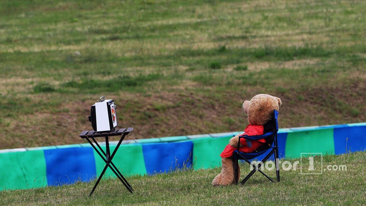 A teddy bear watches television