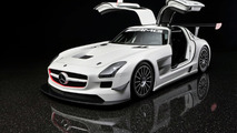 2011 Mercedes SLS AMG GT3 Unveiled in New York