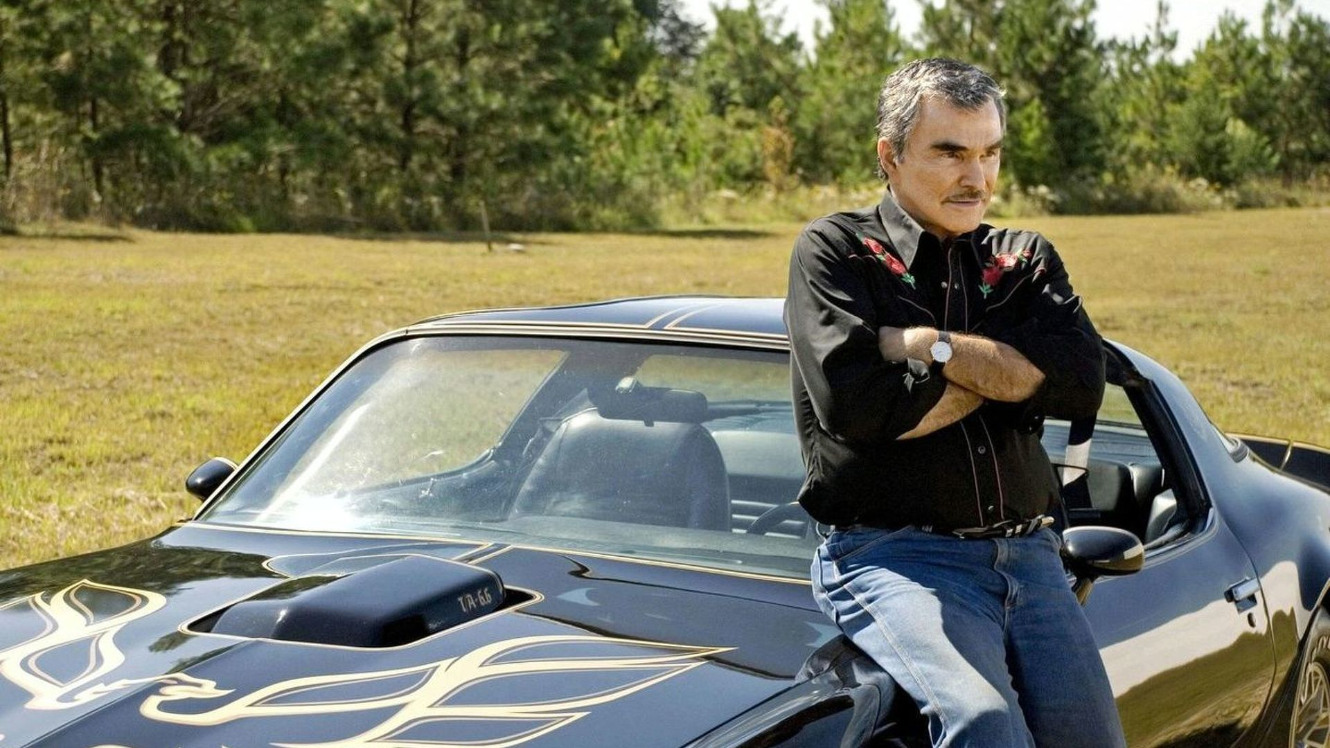 The Bandit is Back!