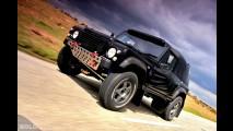 Wildcat 300STR