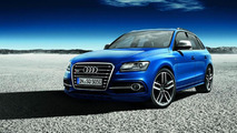 2013 Audi SQ5 TDI exclusive concept