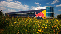 Politician wants to see Red Bull move to Austria