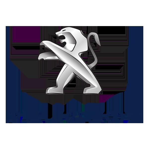 Peugeot 207 Plus 3 porte