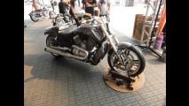 Galeria de fotos: São Paulo Harley Days 2014 acontece com muito sol e rock'n'roll