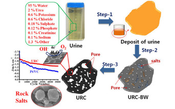 Is a Urine-Powered Fuel Cell Car in Your Future?
