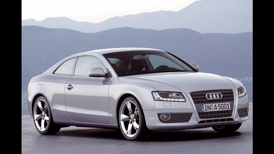 Audi-Fahrer bleiben mobil: Die Feinstaubplakette wird verteilt