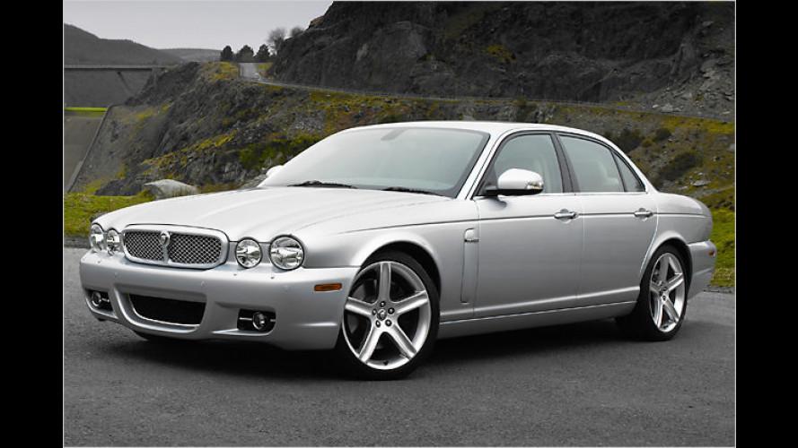 Jaguar XJ: Der Edelkatze wird sanft übers Fell gebürstet