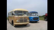Autobus OM Tigrotto Menarini e Fiat Orlandi