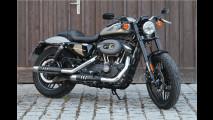 Ein Bike für Motorradfahrer?