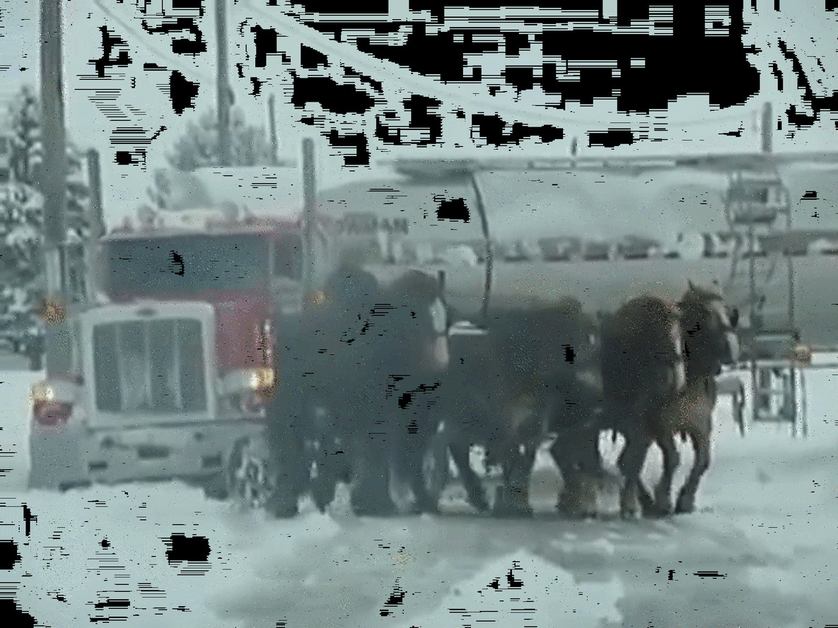 The Best Way To Get Your Car Out of the Snow is With a Bunch of Horses [UPDATE]