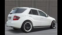 Power-Benz von Kicherer