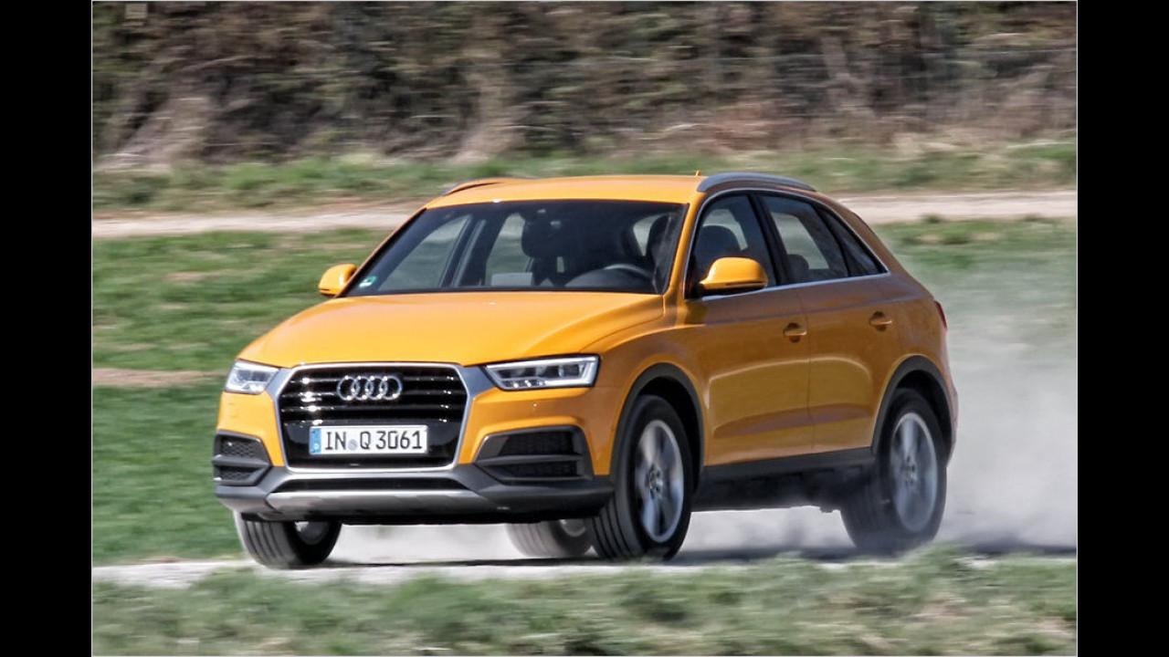 Kleine SUVs: Audi Q3