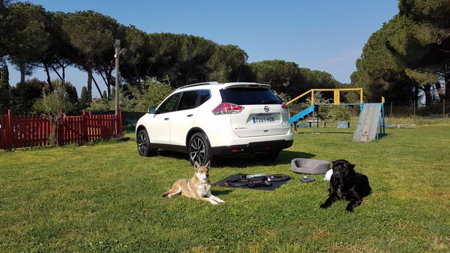 Nissan X-Trail 4Dogs, abbiamo provato la prima