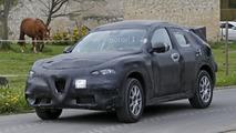 Alfa Romeo Stelvio casus fotoğrafları