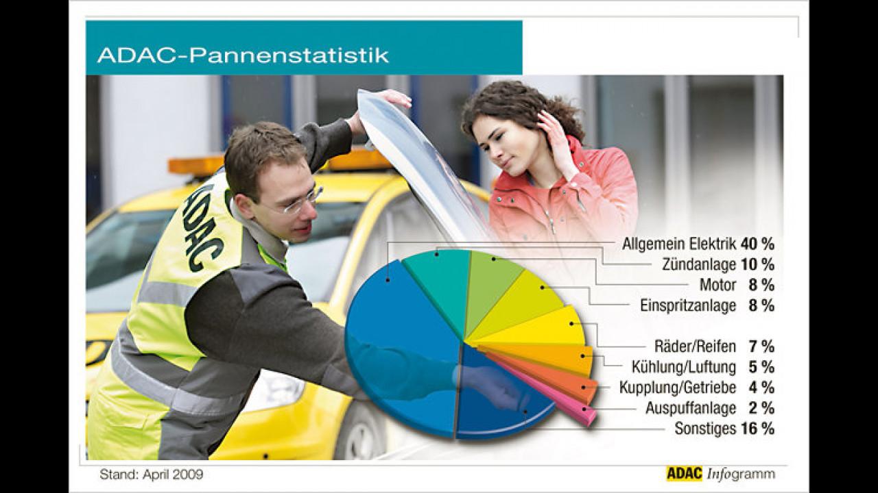 Pannenstatistik 2008