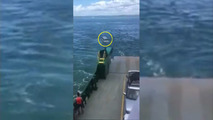 SUV rolls off ferry into water