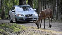 Volvo animal detection system 09.7.2012
