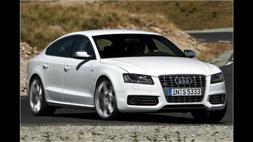 Audi-Neuheiten auf der IAA: Premiere für S5 Sportback