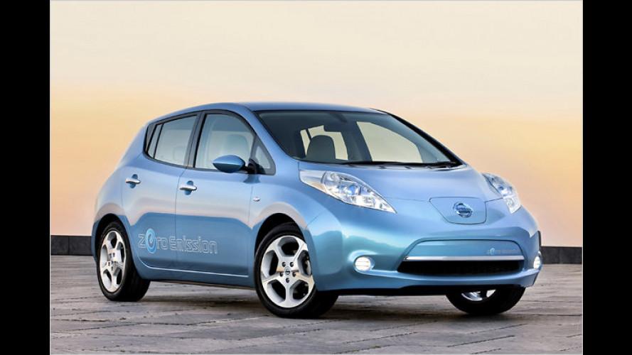 Elektrofahrzeuge für Irland