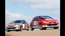 Rallye-Feeling für Jeden