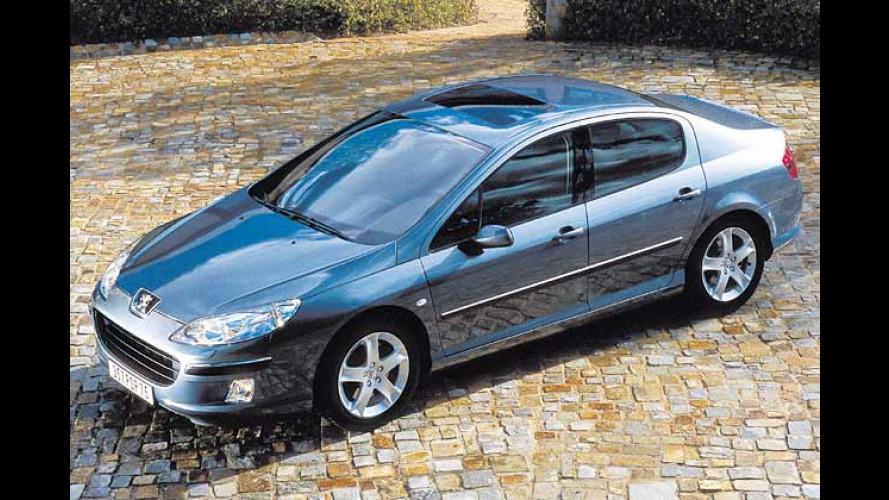 Peugeot 407 debütiert: Bunter Strauß frischer Löwen-Mäuler