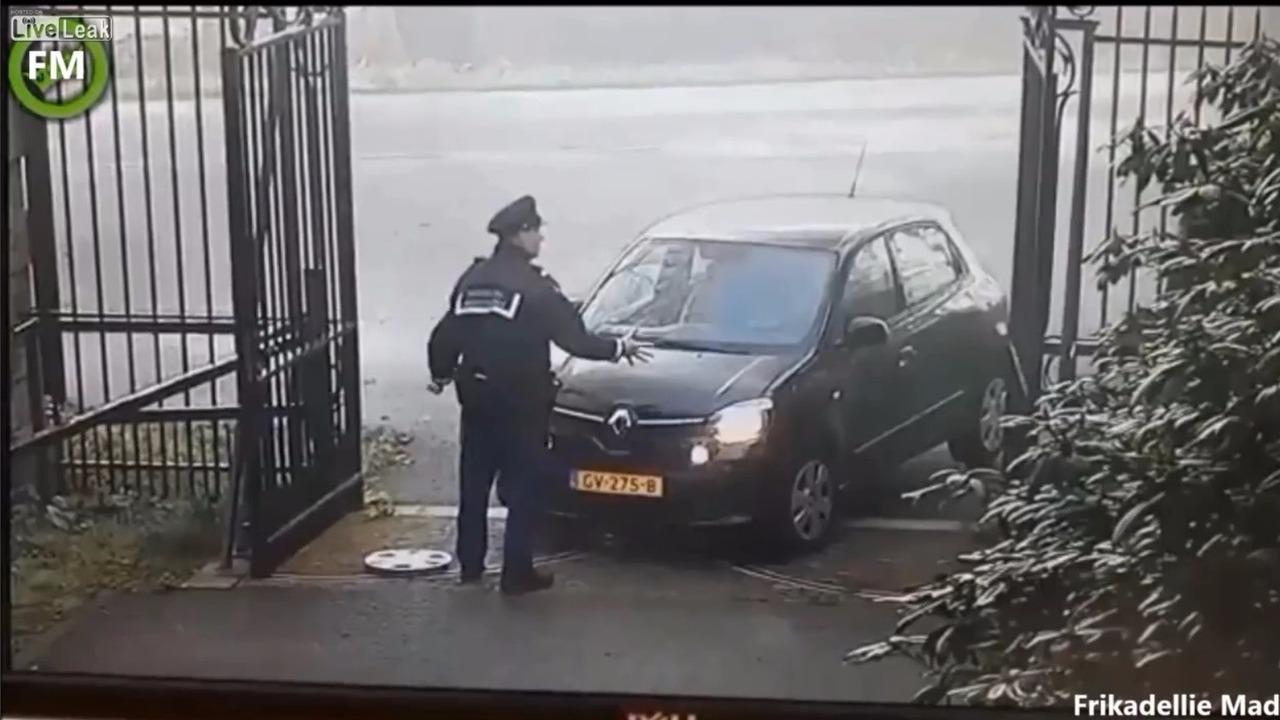 Princess Beatrix Renault Twingo crash