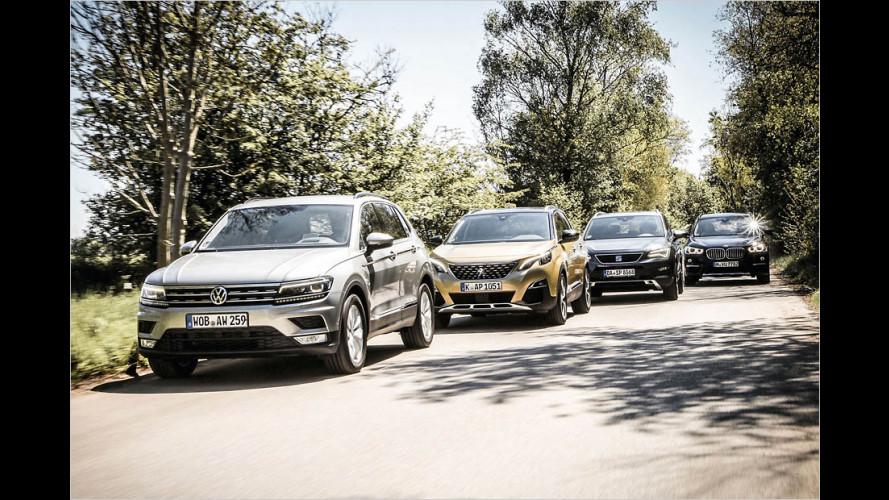 Kompakt-SUVs mit Benziner im Test