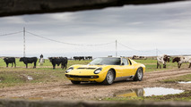 Lamborghini Miura 50th anniversary celebrations