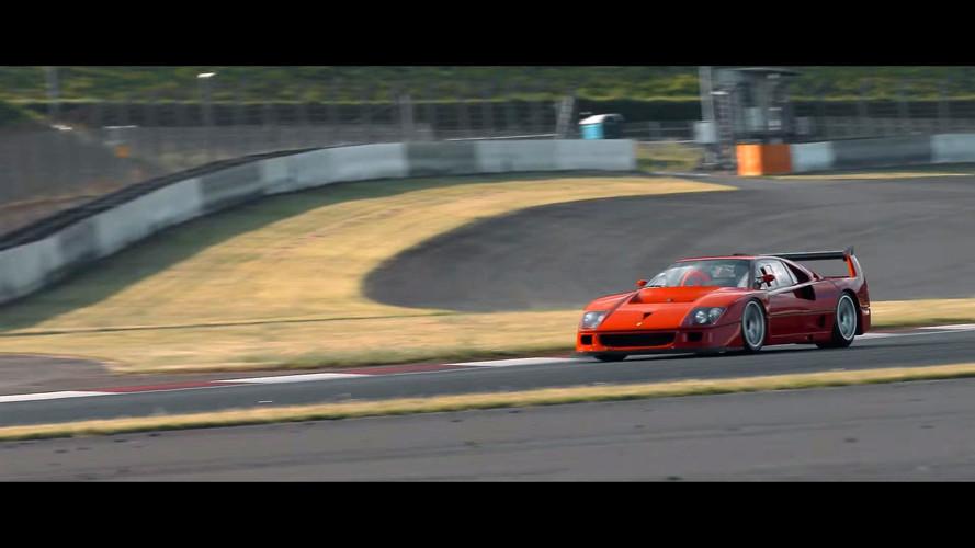 Ferrari 288 GTO Evoluzione ve F40 LM Competizione