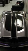 Ghepardo concept, De Tomaso Pantera revival, 600, 25.08.2010