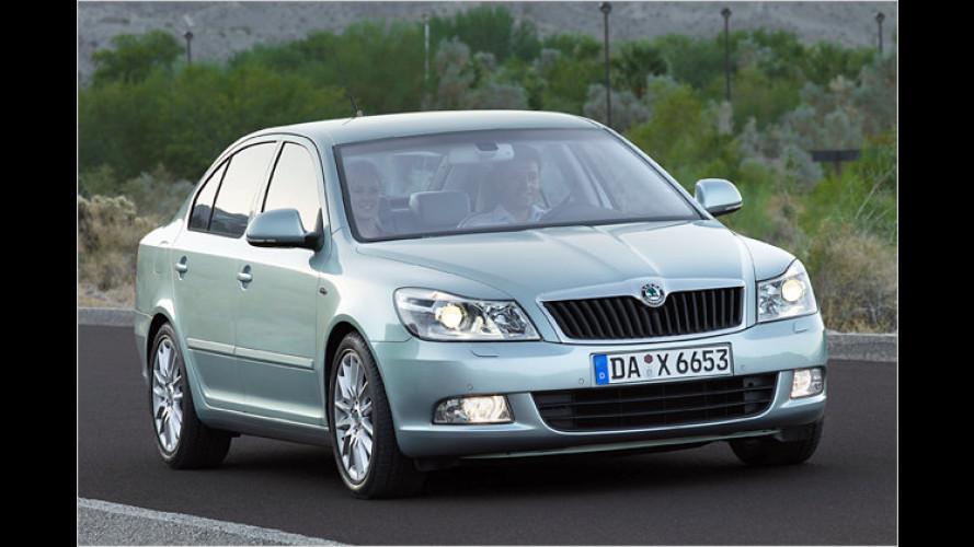 Skoda Octavia LPG: Autogas-Version kommt zur IAA
