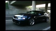 Ford Mustang SVT Cobra Mystichrome